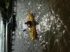 First Time Kayaking